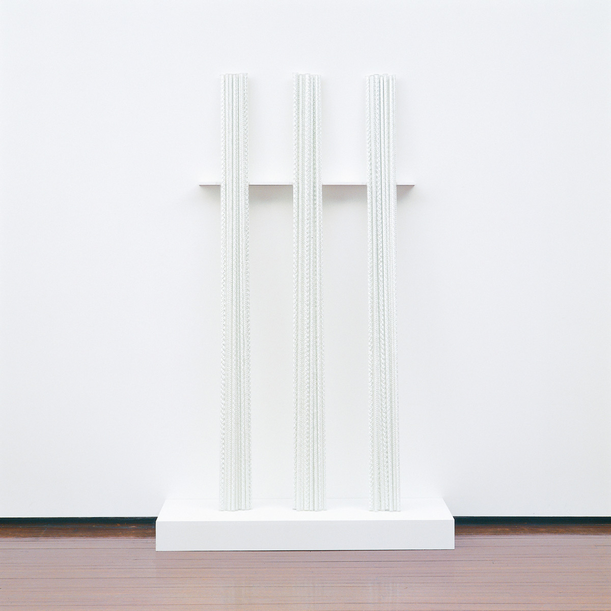Increments and Shadows, 2002. Fibreglass rope, Perspex, wood, 36 parts, 220 x 60 cm, installation view Gitte Weise Gallery Sydney